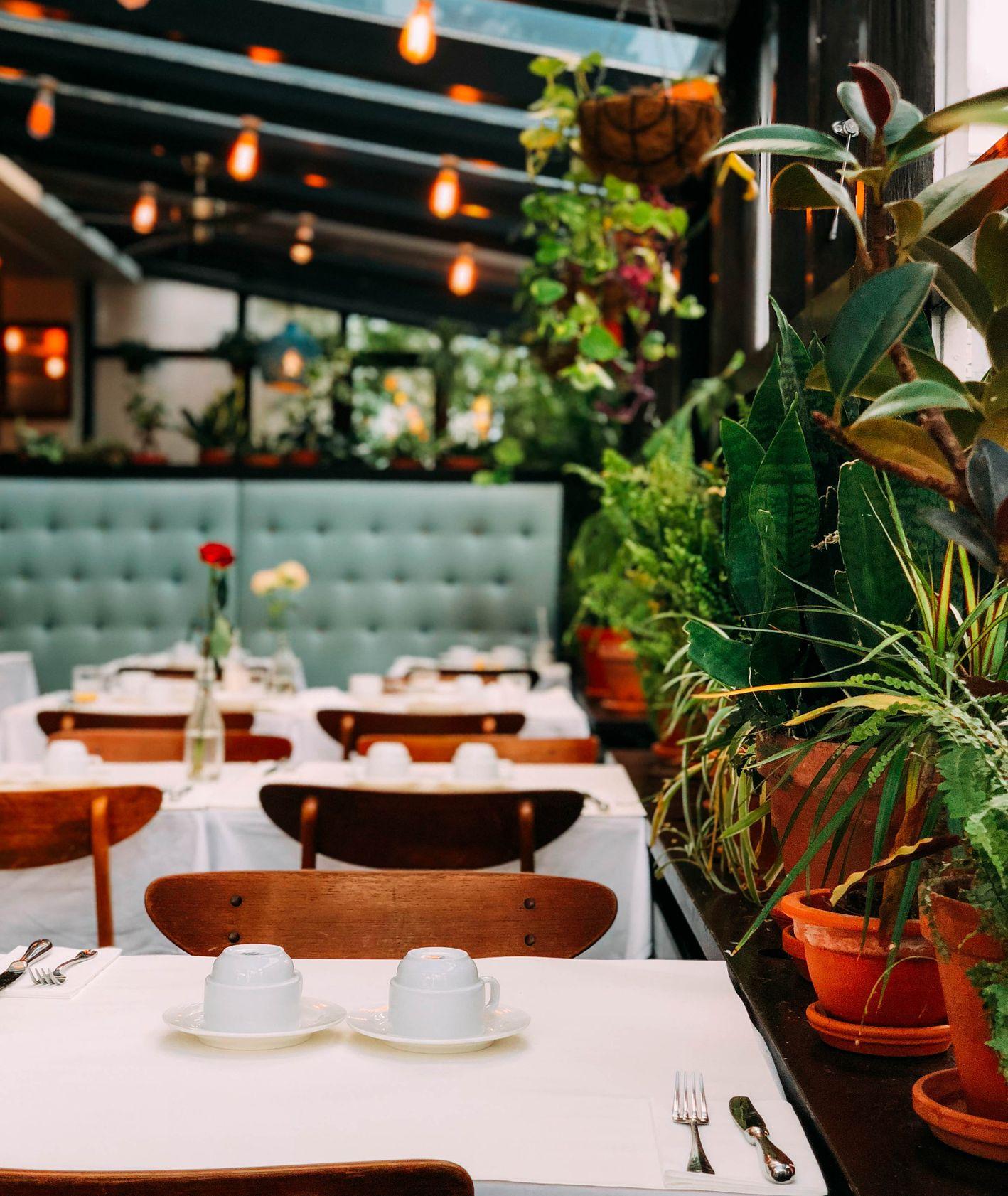 Wnętrze restauracji – drewniane stoły, biały obrus, zastawa stołowa, rośliny na parapecie (fot. Chris Liverani)