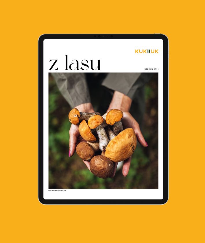 Ebook – Z LASU, okładka, kobieta trzymająca w rękach zebrane grzyby