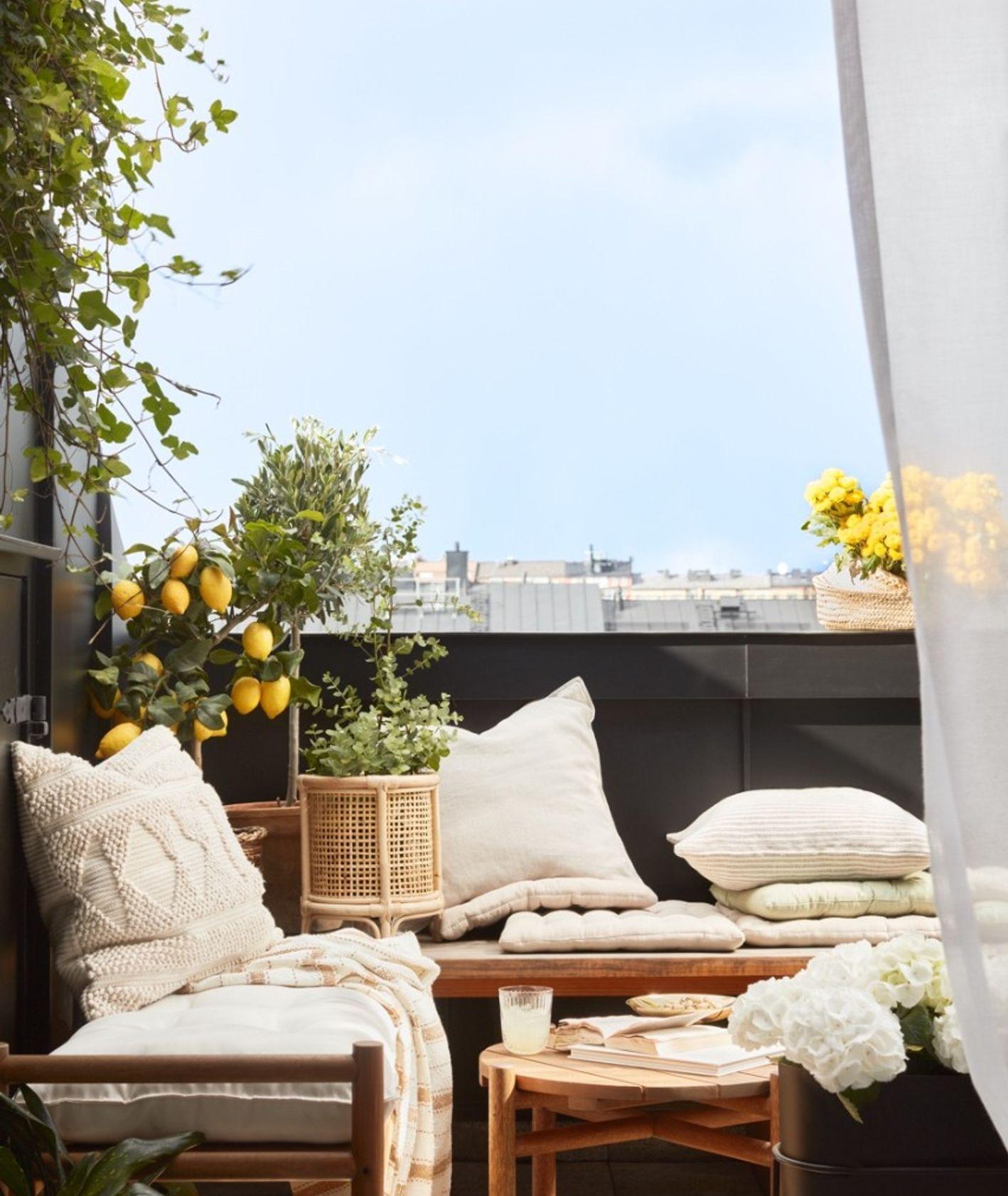 Balkon z poduszkami i drzewem cytrynowym (fot. materiały prasowe)