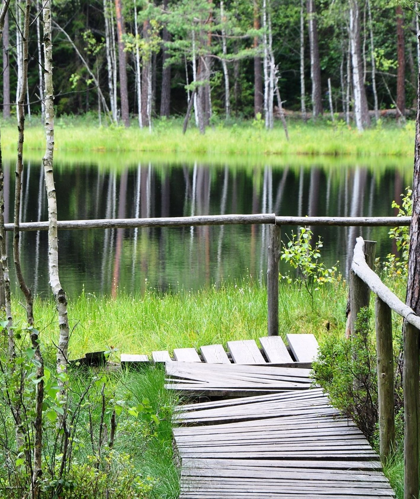 Jezioro, pomost (fot. Mason Dahl / unsplash.com)