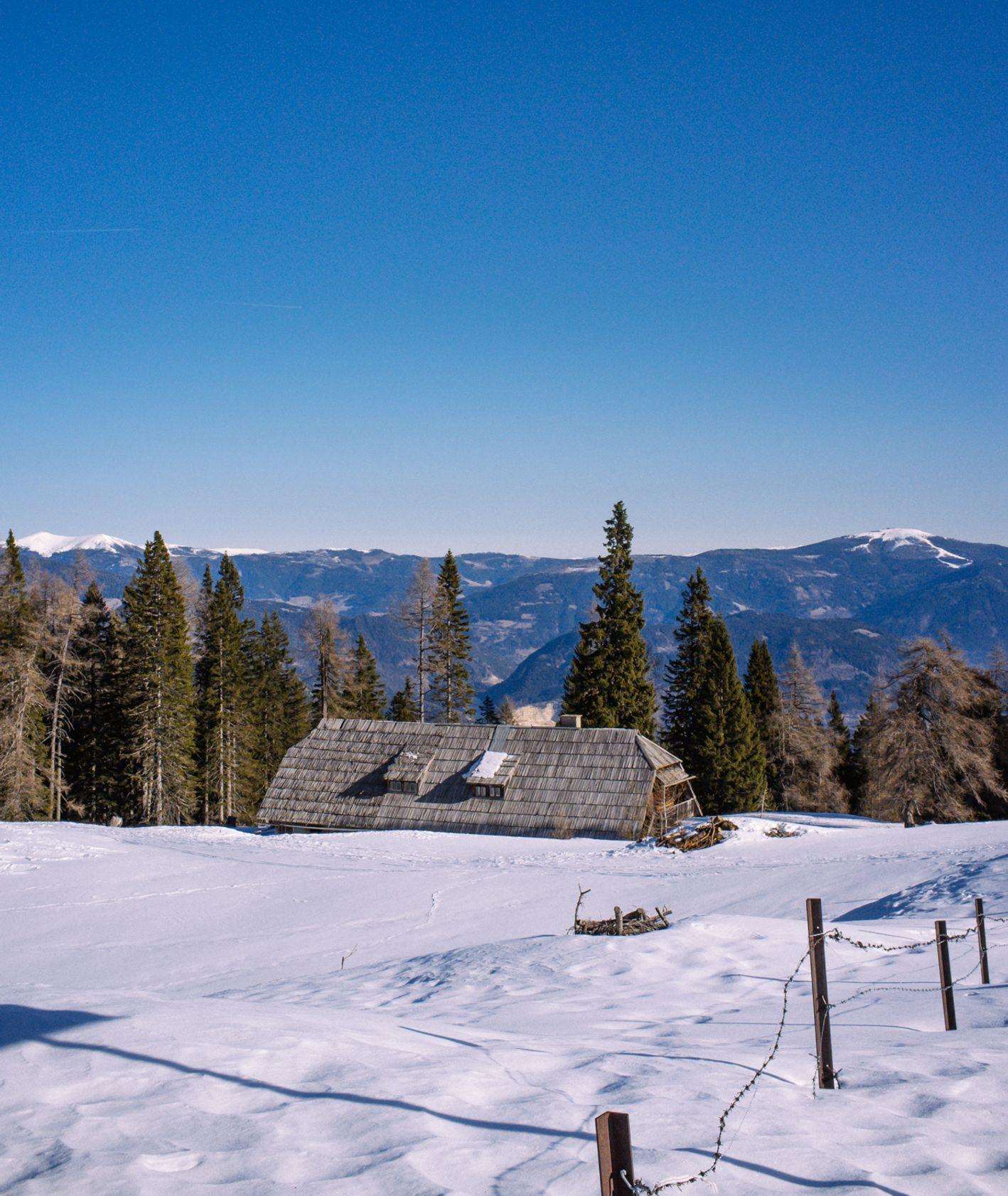 Widok na doline z Rezerwat Przyrody Dobratsch (fot. Zuza Rożek)