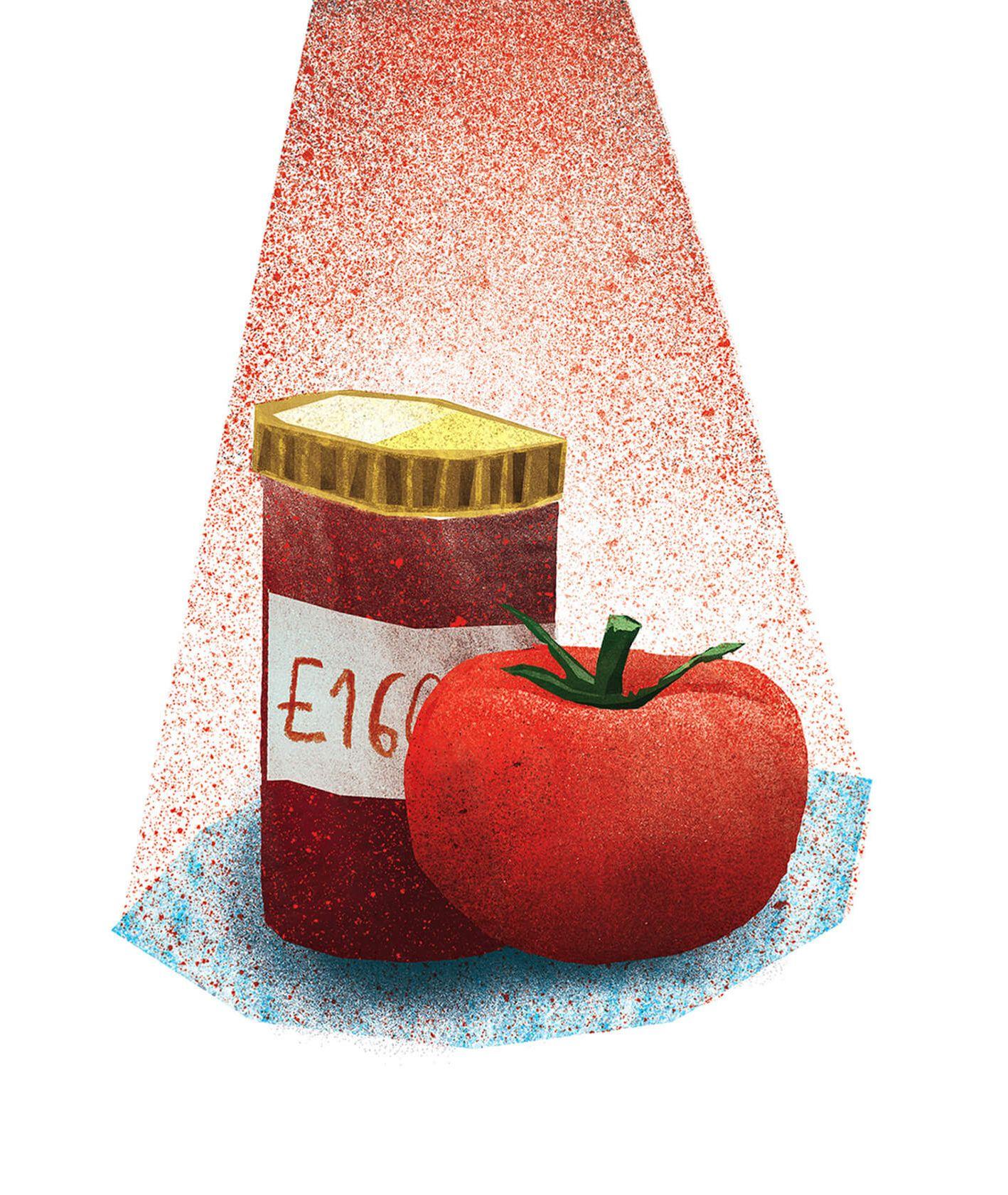 Pomidor w towarzystwie konserwantu – barwnika E160d (il. Urszula Mierzwa)