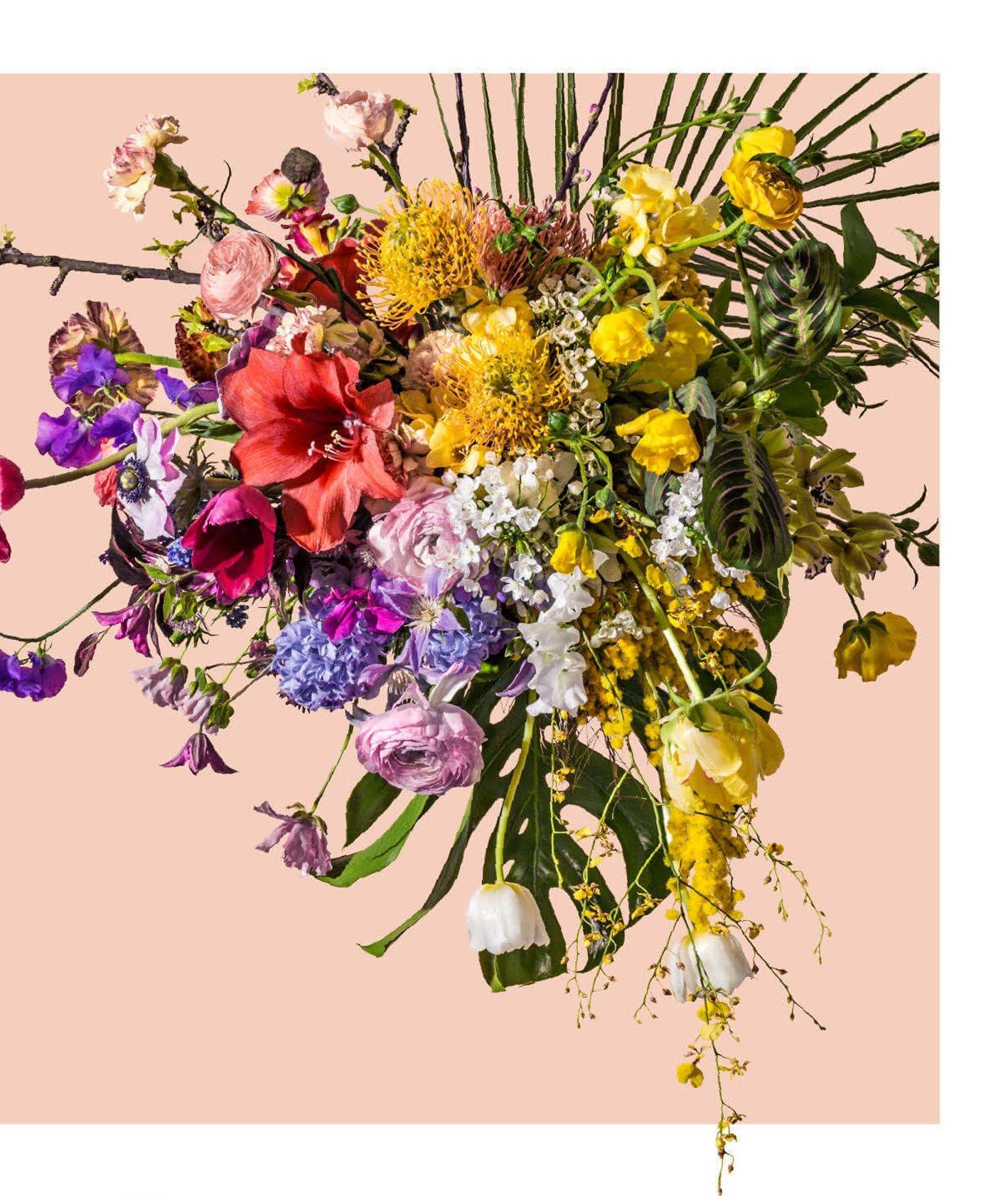 kwiaty są piękne, kwiaty i mjut, Centrum Praskie Koneser