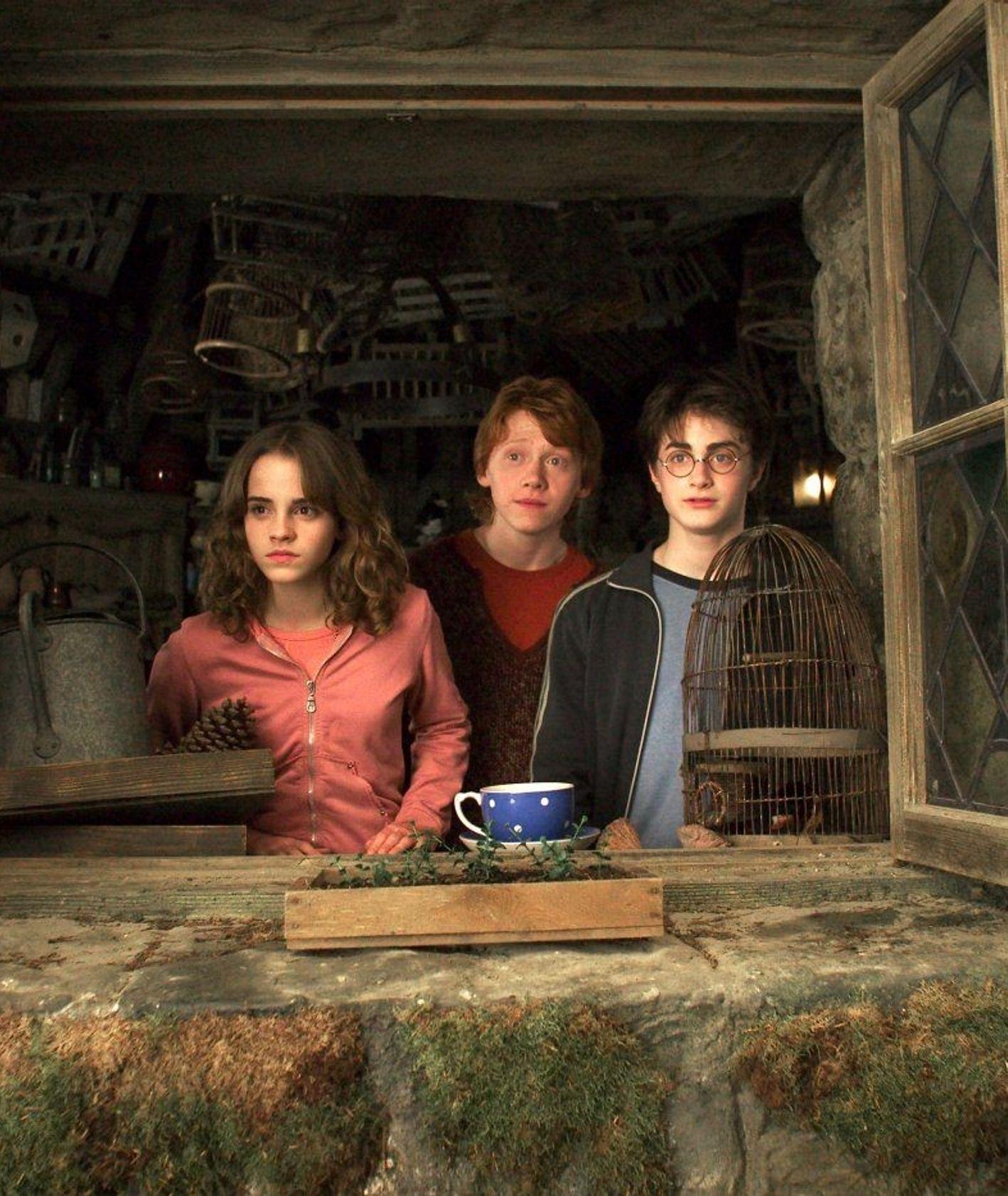 Kadr z filmu – Ron, Harry i Hermiona w domu Hagrida