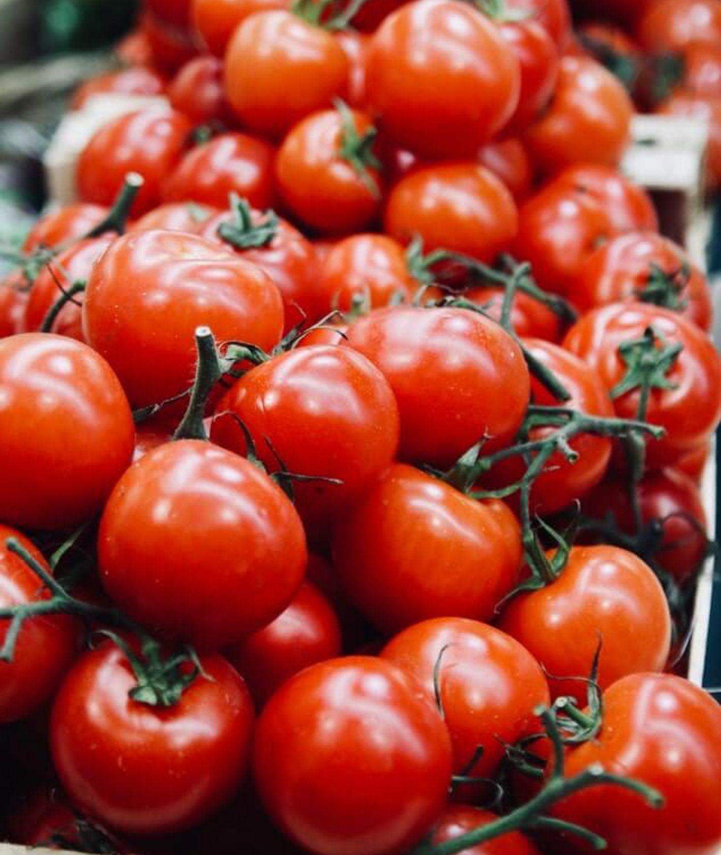 pomidory, jak przechowywać pomidory, Tomek Zielke na tropie, jak przechowywać warzywa,