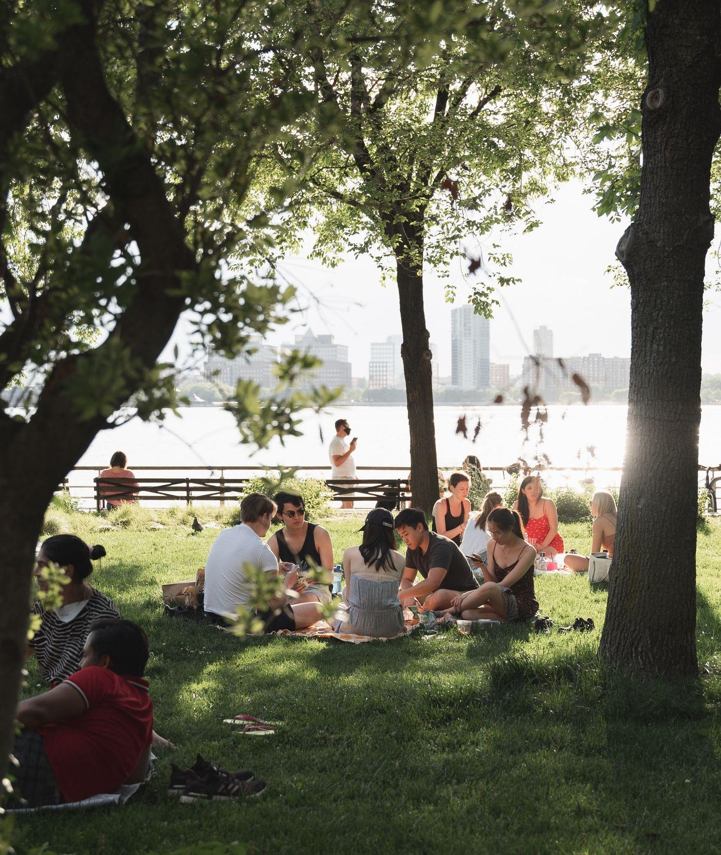 Piknik, spotkanie ze znajomymi, relaks na zewnątrz, spotkania towarzyskie (fot. Mason Dahi / unsplash.com)