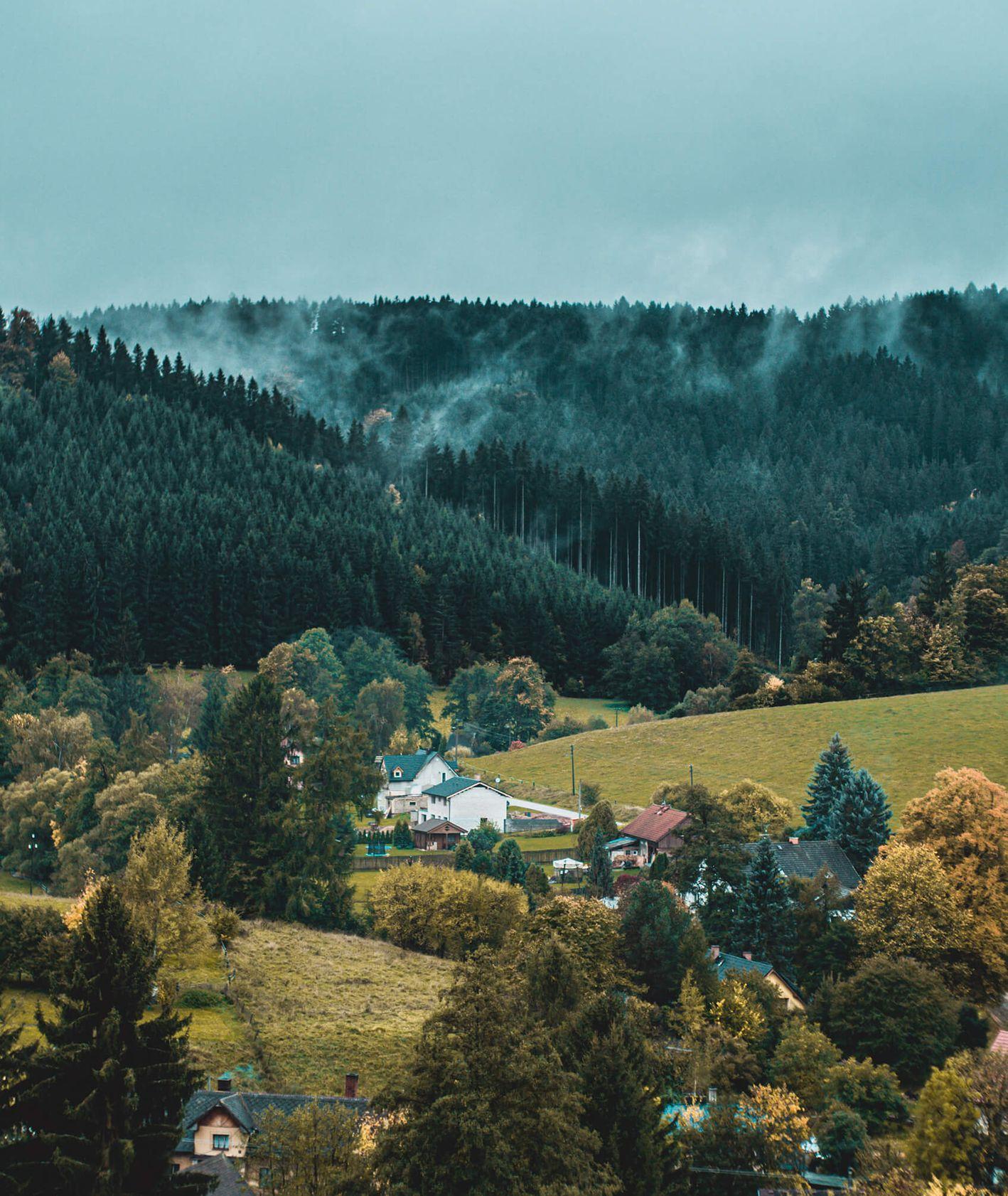 Wioska w Czechach, dookoła las, mgła (fot. Michael Mraz / unsplash.com)