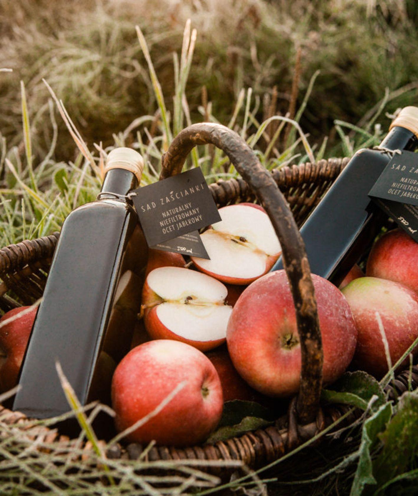 Ocet jabłkowy z Sadu Zaścianki, kosz jabłek