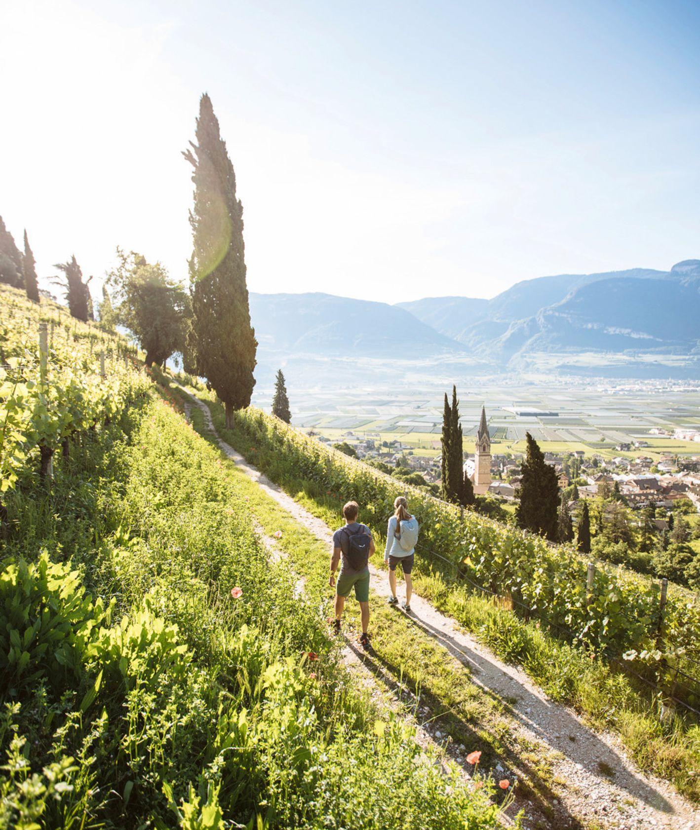 Turyści spacerujący ścieżką trekkingową ponad miastem w Tyrolu Południowym (fot. Benjamin Pfitscher / IDM Südtirol)