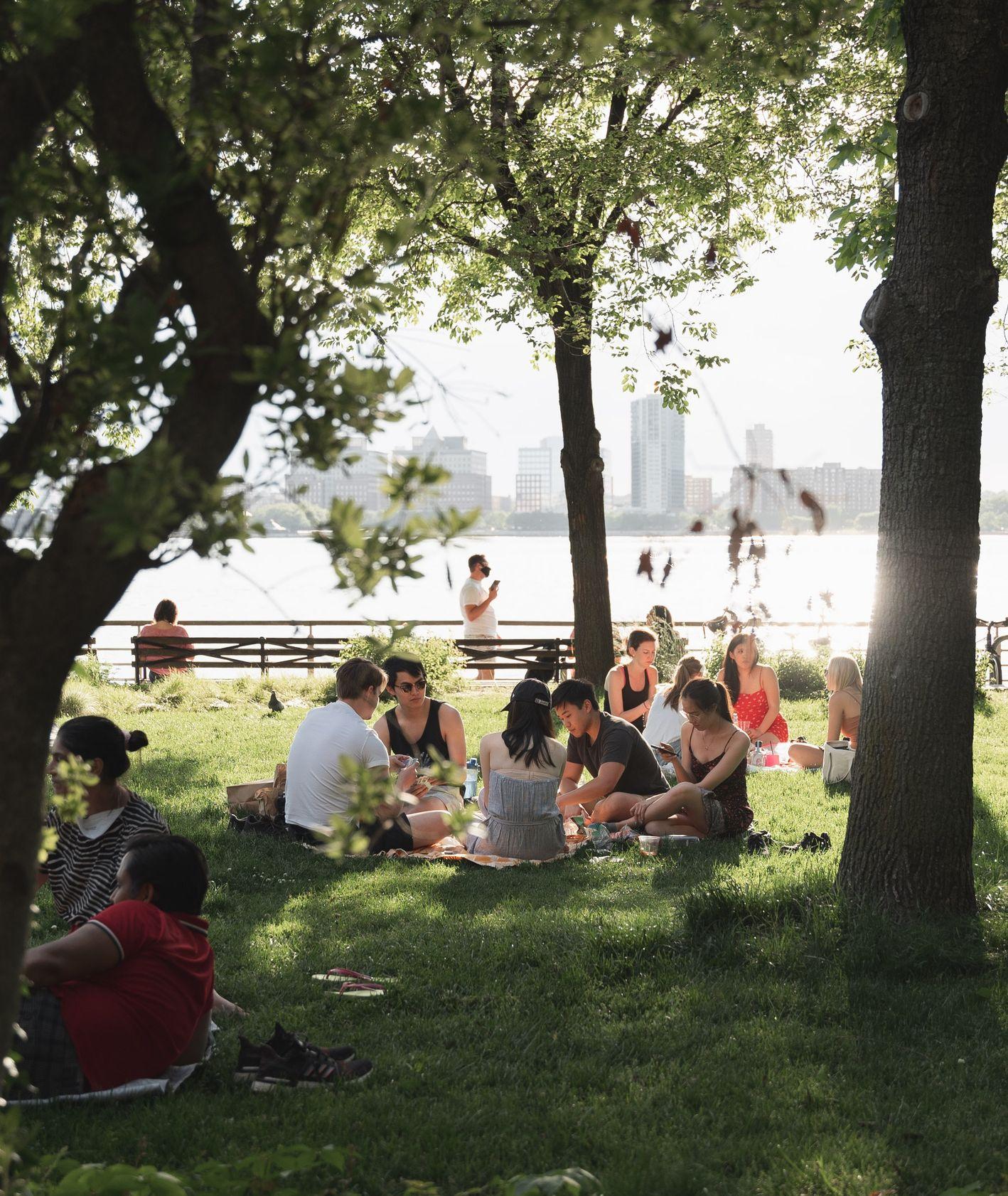 Piknik nad wodą (fot. Mason Dahl / unsplash.com)