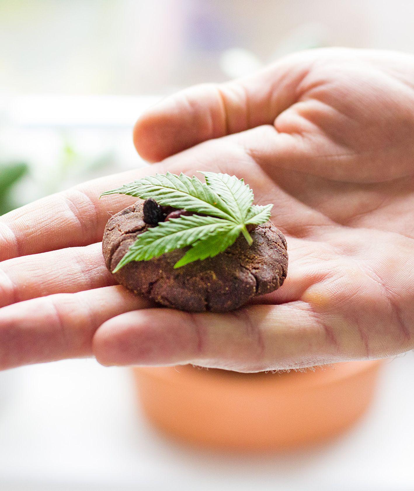 Ciasteczka z marihuaną (fot. Małgorzata Szakuła)